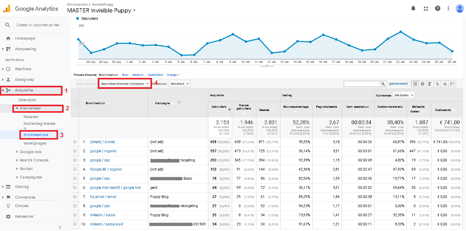 Google Analytics Bron Medium Campagne Rapport