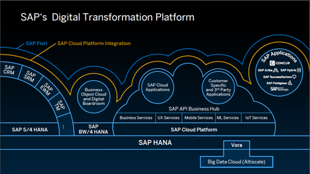 SAP digital transformation platform