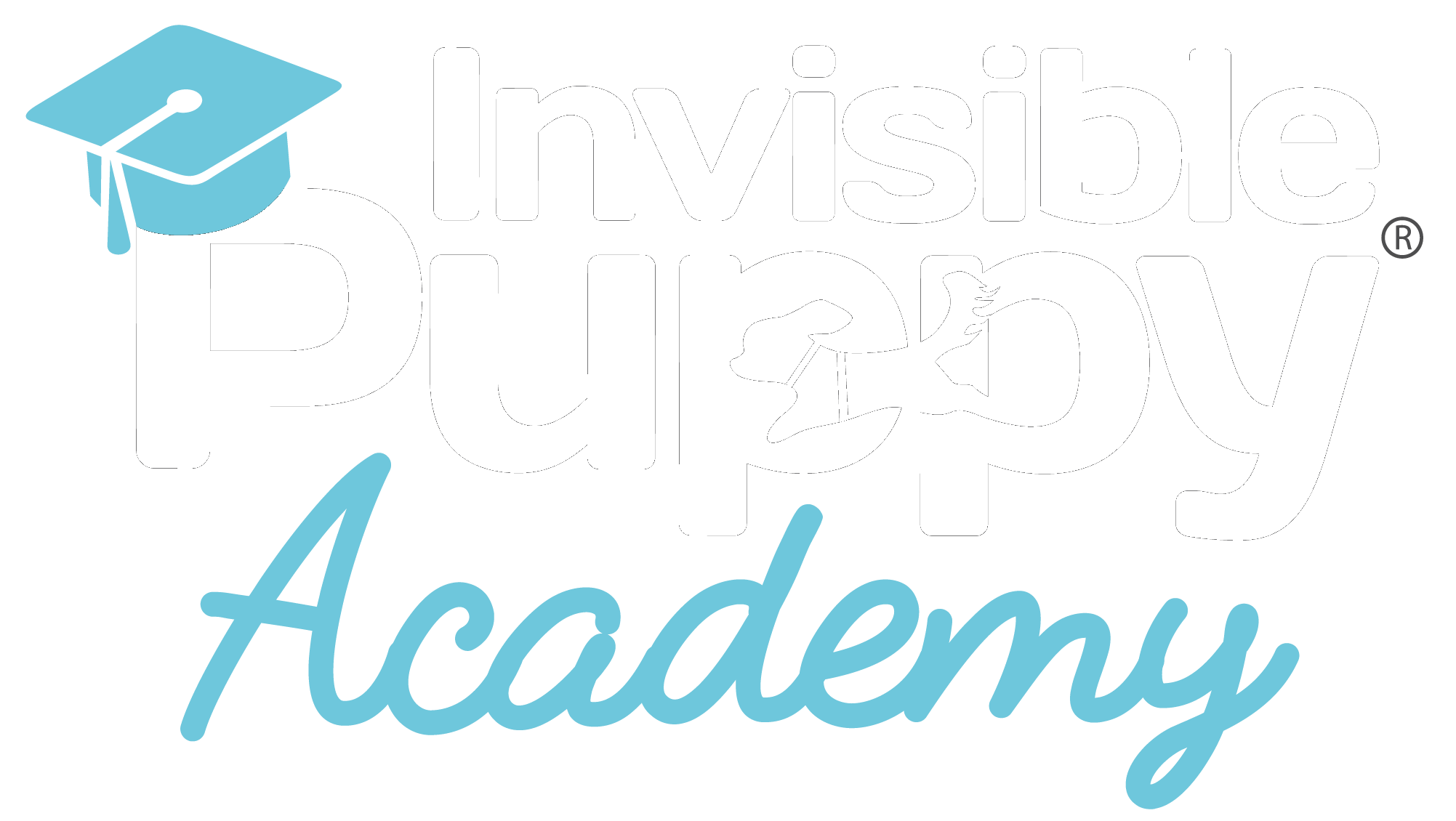 Invisible Puppy Academy