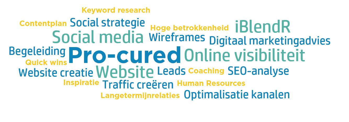 Wordcloud Pro-Cured case online strategie