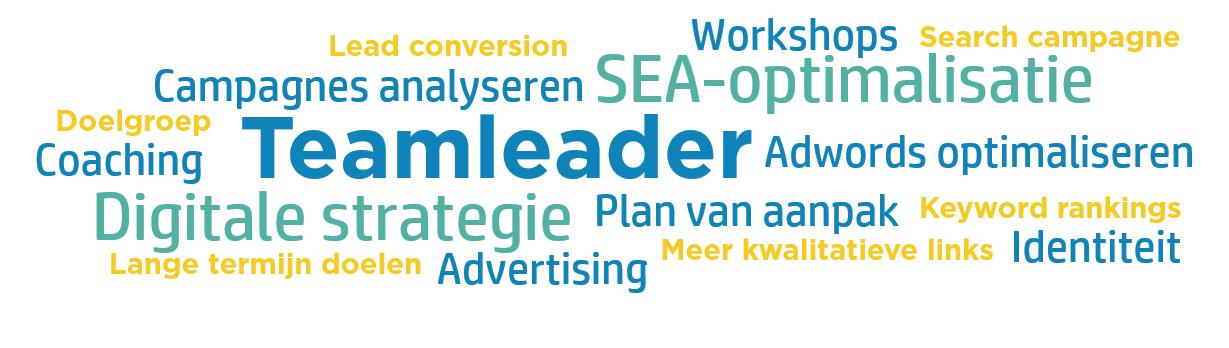 Wordcloud Teamleader Case
