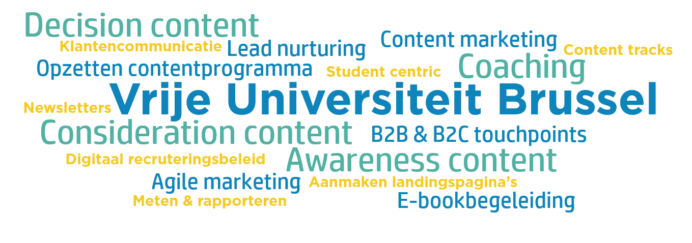 Wordcloud VUB case marketing automation