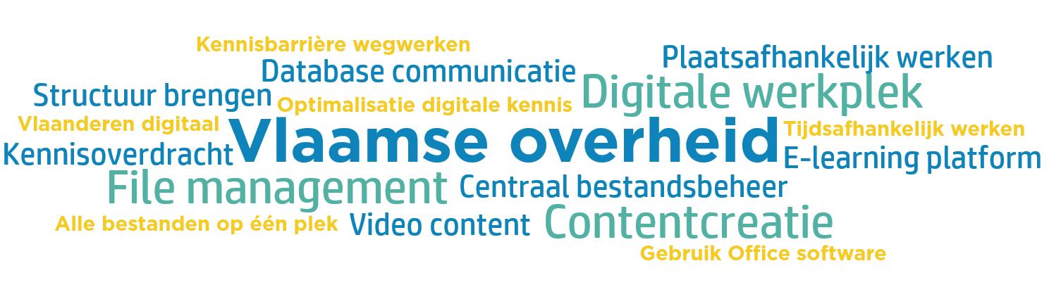 Wordcloud Vlaamse Overheid case opzetten digitaal platform