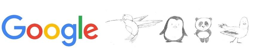 Google-panda-hummingbird-pidgeon-pinguin3.jpg