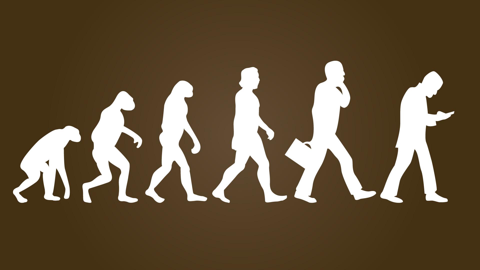SEO evolutie